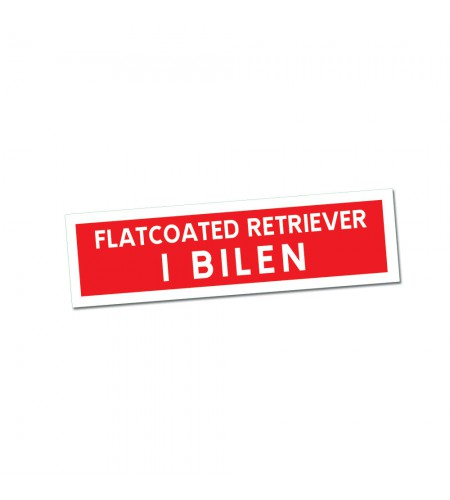Flatcoated Retriever i Bilen